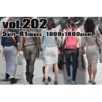 vol202-むちむちボリュームのヒップラインとPライン
