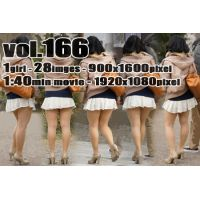 vol166-レースミニスカパンむっちり美脚