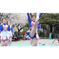 春コレ! VOL.2 全6巻-3 (春の応援団コレクション)