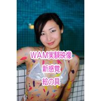 WAM実験的映像  PDF写真集 絵の具