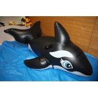 Inflatable Orca suit