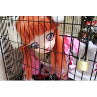 Princess Lione in the cage
