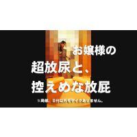 洋式トイレの風景032【放屁】【放尿】【お雫】