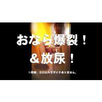 盗撮洋式トイレの風景030【放屁】【放尿】