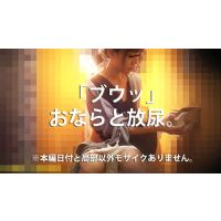 新☆洋式トイレの風景003【放尿】【放屁】