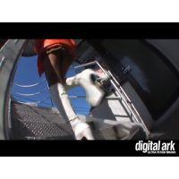 階段パンチラ映像part48 1分
