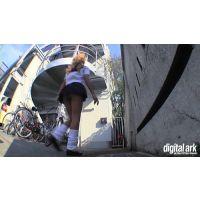 階段パンチラ映像part61 2分