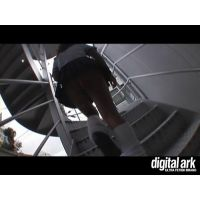 階段パンチラ映像part25 1分