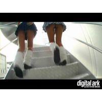 階段パンチラ映像part31 4分