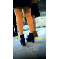 女性の脚 2016 壱