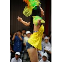 H27浅○サンバカーニバル高画質写真1