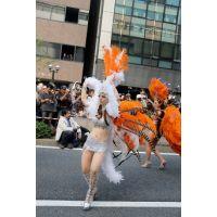 神戸サンバカーニバル高画質写真5
