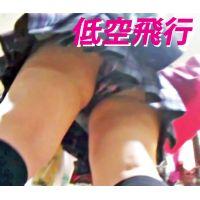 【低空飛行】Vol.21〜Vol.25★お得セット