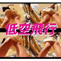 【フルHD 低空飛行】Vol.81〜93★全10点お得セット