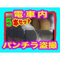 【電車パンチラ】ホームや電車内でガッツリ撮ったパンチラ5本セット!