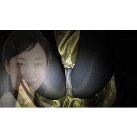 【机下パンチラ】某華道系イベント出演の司会業