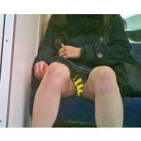 電車で無邪気そうなコがパンチラ