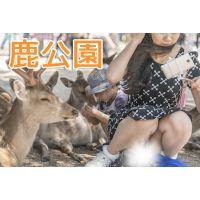 鹿公園!!鹿さんとの自撮りに夢中になる女の子