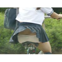 自転車パンチラ訳してチャリチラ!高画質編21~25セット
