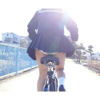 自転車パンチラ訳してチャリチラ!高画質編 �16