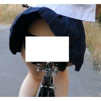 メンズ,ミニスカート,パンチラ,JD,女子大生,自転車,セーラー服,素人,盗撮,チャリパン,下着,制服,チャリチラ,風チラ,高画質,盗撮風,フェチ, Download