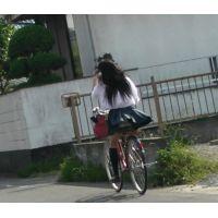 自転車パンチラ訳してチャリチラ!番外編12