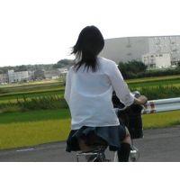 自転車パンチラ訳してチャリチラ!番外編17~19セット