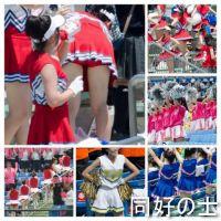 【セット商品】 チア・パレード活動写真 Vol.11-12
