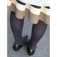 美しいタイツ&パンプス脚