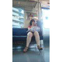 電車1(続編その3)