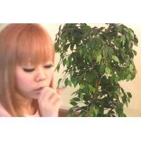 ◆カフェでくつろいでいる女の子のパンチラ盗撮 15