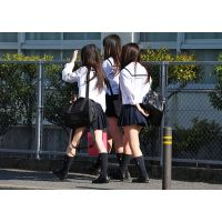 制服JK通学風景169