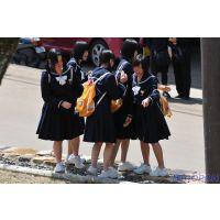 修学旅行風景画像012