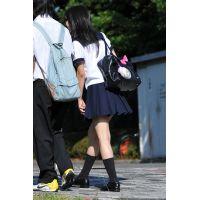 制服JK通学風景220