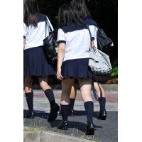 制服JK通学風景224