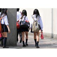 制服JK通学風景179