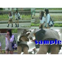 ★再販 JK風の逆さパンチラ動画(見せパンかも)&静止画セット 453