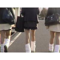 街撮り美脚動画 BEST Vol.05(セット)