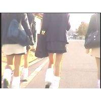 街撮り美脚動画 Vol.23(セット)