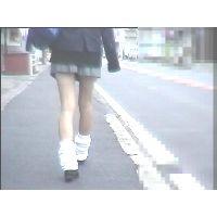 街撮り美脚動画 Vol.24(セット)