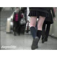 【無料サンプル】街撮美脚動画#123 JKスペシャル