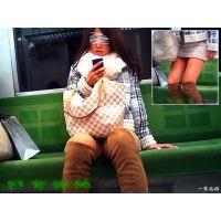 電車内で見かけたミニスカの股間が激アツなおねーさんのチラリズム