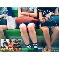 電車で向かいの女子大生たちの股間が微妙に閉じたり開いたりして観察