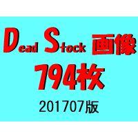 DS画像 201707版