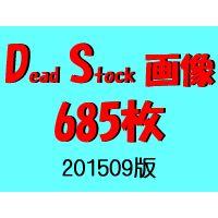 DS画像 201509版