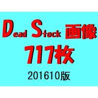 DS画像 201610版
