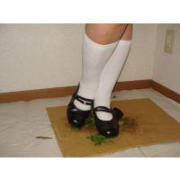 moonstarのストラップ靴_025 雑草葉っぱ踏み