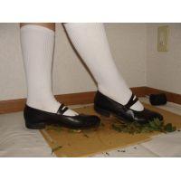 Marianne 053 ストラップ靴で草 2/2