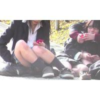 いわゆるミニスカの女の子動画18