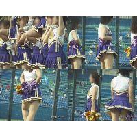 女子大生チアリーダー 大学野球応援  Vol.11【高画質aviファイル版】